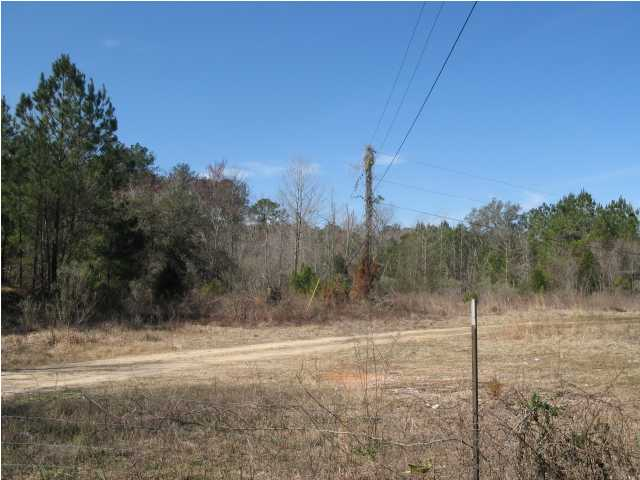 0 HWY. 279, CARYVILLE, FL 32427 (MLS # 533354)