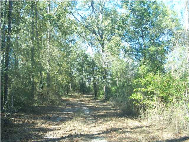 XX HIGHWAY 2 151 ACRES, DARLINGTON, FL 32462 (MLS # 549512)