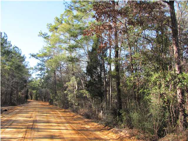 114 AC CROOKED CREEK RD, DEFUNIAK SPRINGS, FL 32433 (MLS # 551281)