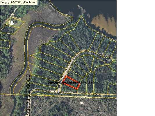 LOT 33 ANSLEY FOREST DR, POINT WASHINGTON, FL 32459 (MLS # 557769)
