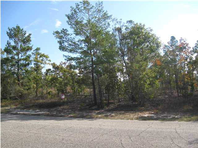 XXX LAKEVIEW DR, DEFUNIAK SPRINGS, FL 32433 (MLS # 566678)