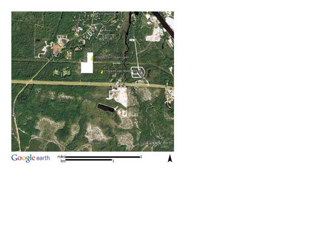 15 AC HWY 98 E, POINT WASHINGTON, FL 32459 (MLS # 571216)