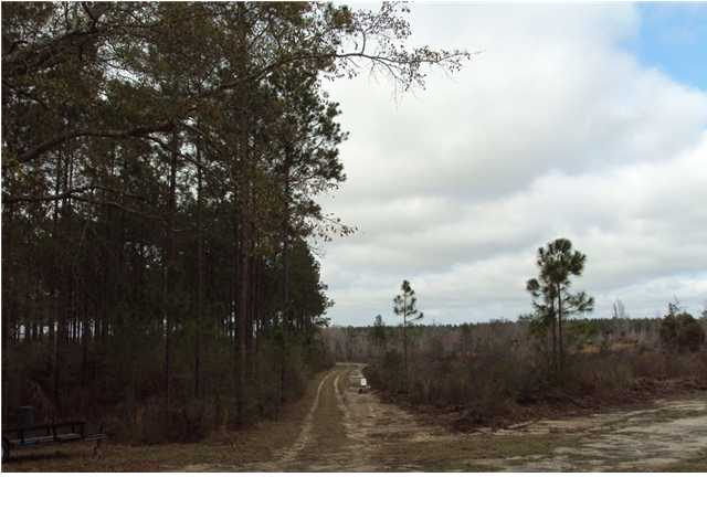 0000 BEAR BAY FLATS RD, PAXTON, FL 32464 (MLS # 571425)