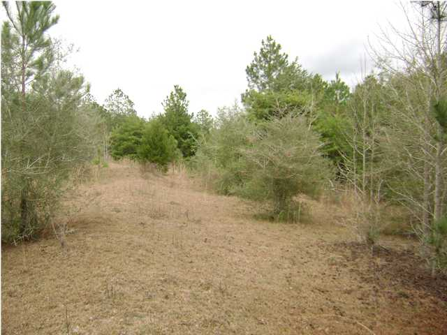 321 CO RD 10, SEE REMARKS, FL SEE REMARK (MLS # 572658)