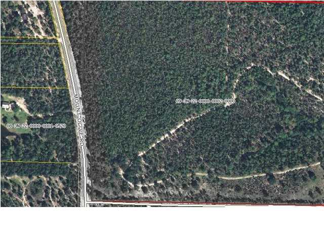 40 AC MT OLIVE RD, CRESTVIEW, FL 32539 (MLS # 579094)