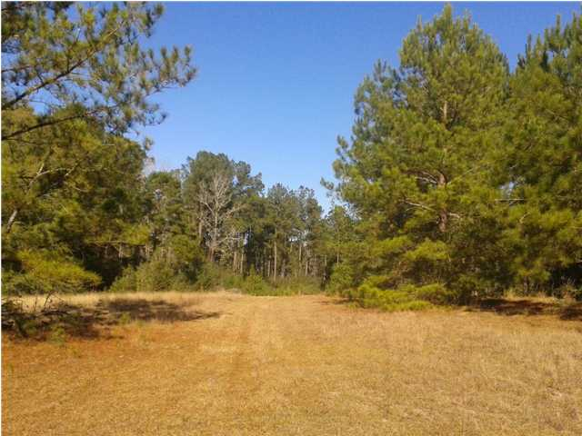 41.6 ACRES CO HWY 181- E, DEFUNIAK SPRINGS, FL 32433 (MLS # 585275)