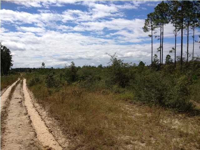 10 ACRES JOE DUGGER RD, FREEPORT, FL 32439 (MLS # 585622)