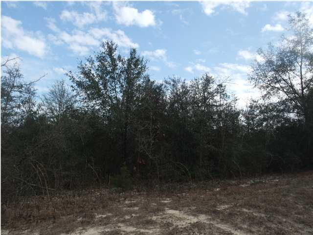 XXX HWY 90 E AND CAROUSEL, CRESTVIEW, FL 32539 (MLS # 590097)