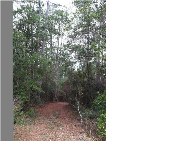 000 SCENIC ROUTE 395 NORTH, POINT WASHINGTON, FL 32459 (MLS # 590460)