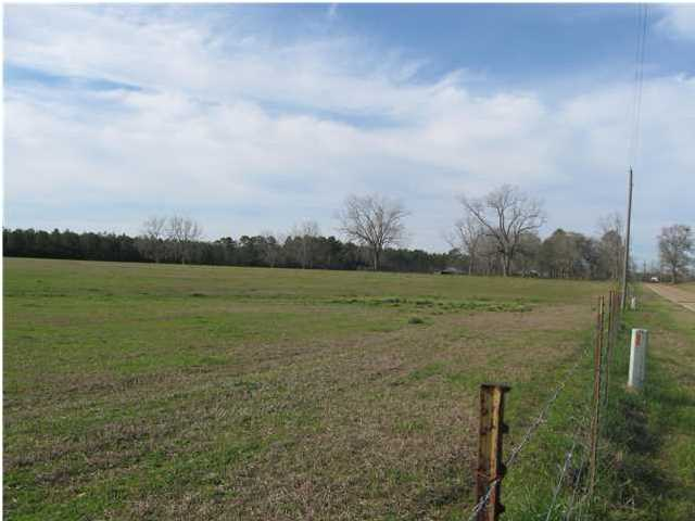 1350 CO. HWY 183-B, DEFUNIAK SPRINGS, FL 32433 (MLS # 597852)