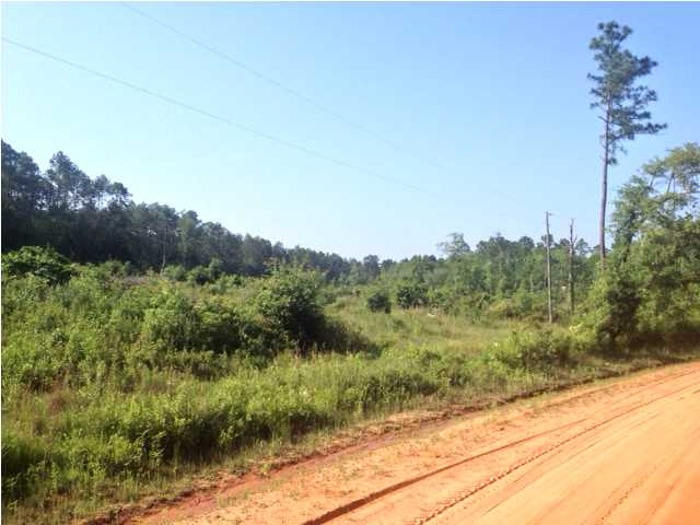 VACANT SHOCKLEY SPRINGS RD, BAKER, FL 32531 (MLS # 598692)