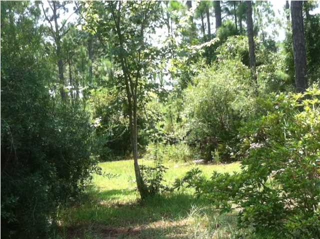 LOT 11A STEVEN ST, SANTA ROSA BEACH, FL 32459 (MLS # 601838)