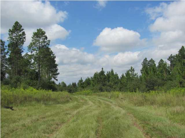 78 ACRES HWY. 1084, DEFUNIAK SPRINGS, FL 32433 (MLS # 604917)