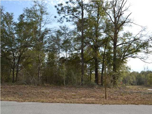 1 000 GAP BOULEVARD, CHIPLEY, FL 32428 (MLS # 606269)