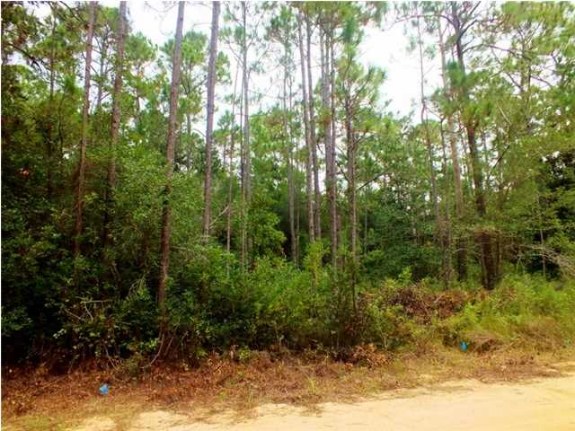 LOT 25 WILD BLUEBERRY WAY, SANTA ROSA BEACH, FL 32459 (MLS # 606727)