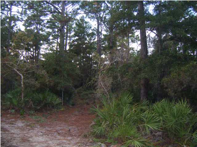 12 NANCY CLAIRE LN, SANTA ROSA BEACH, FL 32459 (MLS # 608349)