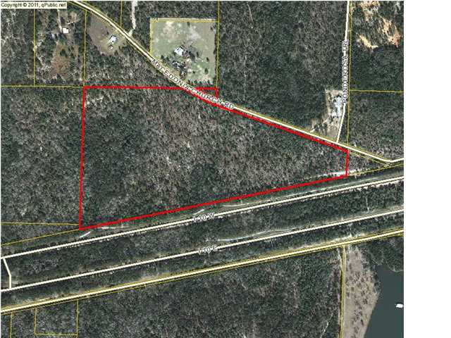 49.4 ACRES MACEDONIA CHURCH RD, ARGYLE, FL 32435 (MLS # 608909)