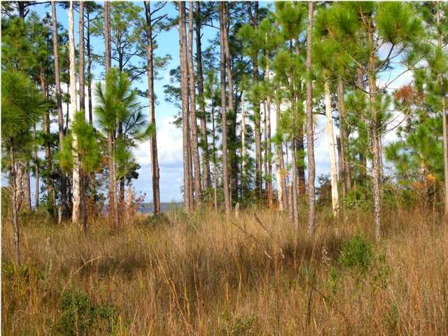 #  5 WHISPER LN, SANTA ROSA BEACH, FL 32459 (MLS # 610002)