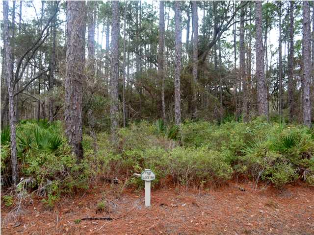 LOT 56 WOODS THE PH II, POINT WASHINGTON, FL 32459 (MLS # 612472)