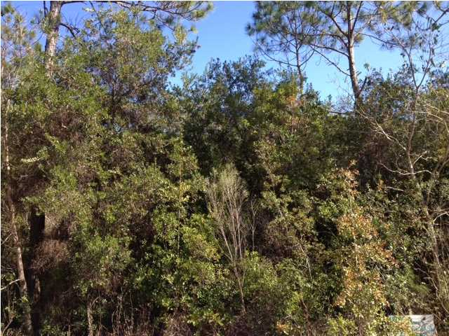 LOT 14 ELM ST, SANTA ROSA BEACH, FL 32459 (MLS # 612547)